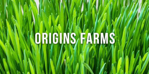 origins farms