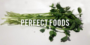 Perfect_Foods-300x150